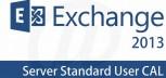 MS Exchange Server Std CAL 2013 SL 1User